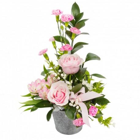 Pots of Pink